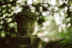 Neulich auf dem Friedhof (mkniebes) Tags: green cemetery dof bokeh tombstone planart1450 bokehlicious bokehballs zf2