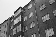 ot (Lup0s) Tags: blackandwhite berlin film minolta grain xd7 bonjourtristesse orwo np22