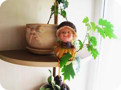 IMG_28371 (mashkagav) Tags: home kitchen summer2012