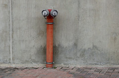 Watching  (Explore 23/07/15) (only lines) Tags: street portugal hydrant lisbon watching