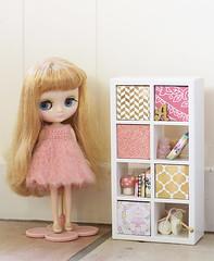 Bonnet and shelves