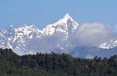 Magnificent Jopuno! ( 21.07.2015) (draskd) Tags: kanchenjunga westsikkim kanchenjungarange trekkingpeaks easternhimalayas mtjopuno jopunopeak explore210715