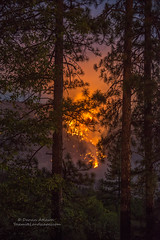 Firescape (Darvin Atkeson) Tags: mountains forest fire smoke flames nevada sierra helicopter willow inferno forestfire blaze firefighters basslake oakhurst wildfire darvin atkeson darv lynneal yosemitelandscapescom