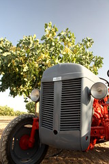 IMG_0368 (ACATCT) Tags: old espaa tractor spain traktor agosto toledo antiguo massey pistacho tembleque barreiros 2015 bustards perdices liebres avutardas ff30ds r350s