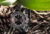 IMG_0293 (store.vip2010) Tags: chrono heritage montecarlo tudor