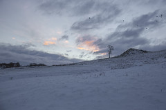 Rabbit Hill (jackharrybill) Tags: haworth snow rabbithill