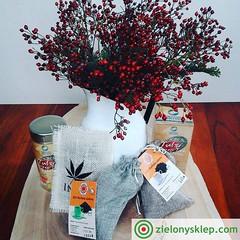 Organic tea zielonysklep.com (karolinamaciejewska612) Tags: tea ajurweda ayurveda organicwellness organictea zielonysklepcom tulsi inspiration