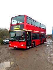 Bear Buses TN33197 LT52XAH. (kizmanbusesco) Tags: bear buses trident plaxton lt52xah repaint cream band 2016 movements red ex london tower transit first group tn1197 tn33197 cummins euro 3 zf 4 speed