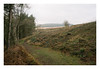 . (-klik-) Tags: beeley moor woods vsco vscoportra