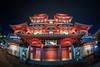 The Buddha Tooth Relic Temple... (itsrbtime) Tags: temple architecture night nightshot light patterns wideangle wide ultrawide fisheye olympus olympusomd omd olympusem5ii em5 em5ii samyang samyang75mm samyang75mmf35 samyang75mmfisheye