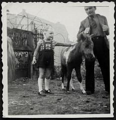Archiv K596 Ein braver Esel, 1950er (Hans-Michael Tappen) Tags: archivhansmichaeltappen tierliebe tier vieh fotorahmen outdoor nutztier tierfreunde vater sohn esel kind child boy father son 1950s 1950er
