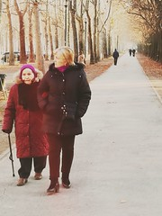 A chilled walk #streetphotography #people  #women #walking #old age #caregiver #city #park #trees #moody (giuseppe_calvetti) Tags: walking park old city caregiver moody streetphotography women trees people