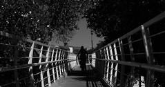 Tan rápido como sea permitido (brandonplascencia) Tags: blanco black negro white bridge puente bici bike puebla exterior cielo sky street calle despejado tree arboles piso parque park edifcio building sol sun shadow sombra