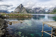 Codfish drying flake at Reine (marko.erman) Tags: reine lofoten norway moskenesøya sony island archipelo landscape mountains sea clouds panorama nature travel popular pov outside rocks slopes beauty beautiful serene serenity quiet codfish flake drying