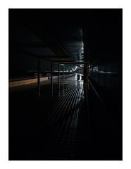 rainingblue (seba0815) Tags: ricohgrdiv grdiv raw blue raining rain water sea mallorca island beach night nightfoto loneliness empty light center reflection urban mood seba0815 walk nightwalk street streetlight