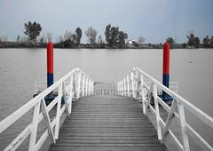 Puebla del rio (Sevilla) (ertitocarli) Tags: line muelle river rio sevilla seville spain españa puebla coria agua barcos barco bn selectivo blanco negro water nature