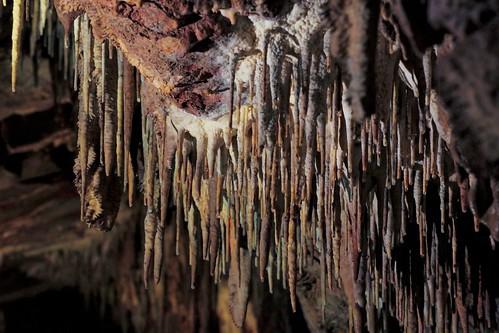 Jaskinia Raj / Cave Paradise