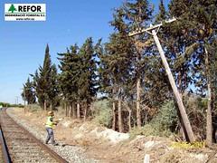 RETIRADA ANTIGUOS POSTES COMUNICACIONES ADIF - REGENERACIO FORESTAL  S.L. - LINEA MURCIA AGUILAS F2 (JOAQUIN PERALES MARTINEZ - REFOR S.L.) Tags: ave ferrocarril renfe medioambiente forestales fgv forestal jardineria biodiversidad feve cortafuegos adif infraestructuras ecosistema obraspublicas fitosanitarios enagas desbroce aenor herbicida redelectrica silvicultura maquinariaforestal refor agroforestal controldeplagas trabajosforestales lineaaltavelocidad maquinariaagraria franjadeseguridad trabajosagricolas avemadridvalencia mantenimientoinfraestructuras forestalsl reforsl controlerosion joaquinperalesmartinez regeneracioforestalsl prevencionincendiosadif prevencionincendiosforestales prevencionincendiosferrocarril incendiosferrocarril limpiezavegetacion limpiezapasosdeagua lineaferrocarril controldelavegetacion controlvegetacion prevencionincendiosforestalesadif prevencionincendiosimagenes estabilizaciontaludes estabilizaciondetaludes aveadif desbrocemecanizado maquinariajardineria trabajostragsa regeneracionforestal prevencionincendiosforestaleslineaaltatensin cortafuegosredelectrica prevencionincendiosredelectrica prevencionincendiosforestalesredelectrica cortafuegoslineaaltatension maquinariatratamientosfitosanitarios biocidas defoliacionquimicavegetacion limpiezacauces mantenimientoferrocarril selvcultura prevencionincendiosforestalesgeneralitatdecatalunya controldeplagasurbanas pilotoseguridadadif omioperariomaquinariainfraestructura limpiezacunetas recursopreventivo controlvegetacionferrocarril prevencionincendioslineaaltatensin