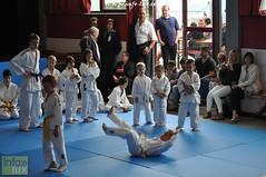 Judo-habay042