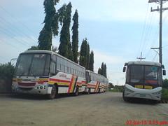 Magicline Express (PBPA Hari ng Sablay ) Tags: bus pub philippines replica aspire isuzu goldendragon adamant dmmc sjdm pbpa delmontemotorworks delmontemotors dmmw mayamytrans philippinebusphotographersassociation magiclineexpress