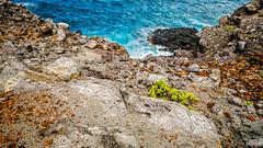 Black Lava Rock (Do the Twist!) Tags: ocean sunset clouds landscape hawaii lava rocks maui vegetation nakaleleblowhole