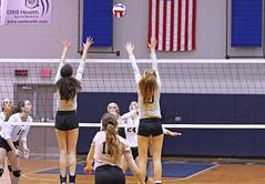 IMG_8106 (SJH Foto) Tags: girls volleyball high school york delone catholic team teen teenager net battle spike block action shot jump midair