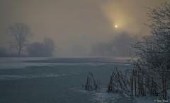 A beautiful morning .. (tferi666) Tags: nature winter beautiful best ngc nice fantastic amazing sony ilce next alpha a6300 sonyflickraward sonyflickrawardgold magyar hungary zemplén berek bodrog gyönyörű