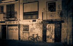 Late night illusion (Tigra K) Tags: valència comunidadvalenciana spain es 2015 architdetail architecture balcony city door lattice night painting road valencia vine wall wild window art cat