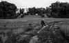 Duke Farms Field (Photo CDR) Tags: dukefarms hillsborough