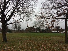 Village Green (My photos live here) Tags: horsmonden kent weald england village green winter trres grass leaves