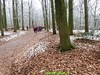 "2017-01-18    Rhenen 23 Km  (22) • <a style=""font-size:0.8em;"" href=""http://www.flickr.com/photos/118469228@N03/31563347084/"" target=""_blank"">View on Flickr</a>"