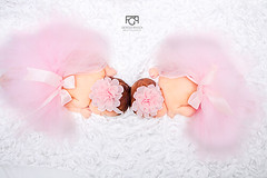 Princesas en tutú (@giofrasca) Tags: bebes baby babies twins gemelas niñas girls rosa rosado pink white blanco tutu sesion nostrobistinfo removedfromstrobistpool seerule2