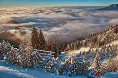 Swiss winter paradise, Paradis hivérnale suisse ,  Les Rochers de Nays . Canton of Vaud. No. 6470 (Izakigur) Tags: nikond700 myswitzerland musictomyeyes lasuisse laventuresuisse liberty thelittleprince ilpiccoloprincipe lepetitprince swiss suiza suisia suizo feel vaud romandie suïssa switzerland europa alps alpes alpen d700 winter cantonvaud suisseromande helvetia flickr coldplay fixyou dieschweiz clouds paradise izakigur topf1000 1000faves