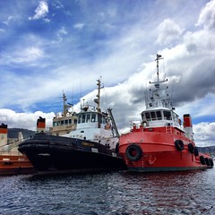 Two tugs. Derwent River.