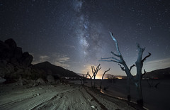 Lakeshore (Night Scapes) Tags: steverengers milkyway nightphotography nightsky nightscape kerncounty kernrivervalley lakeisabella