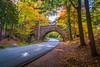 Carriage Road Bridge - Acadia * EXPLORED * (Firoz Ansari) Tags: acadia acadianationalpark maine vacation travel cobblestone bridge road foliage