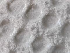 Just White Paper (Jason _Ogden) Tags: iphone7plus macromondays justwhitepaper paper fiber white