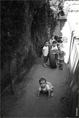 La Pandilla. (GARFANKEL) Tags: fotosparqueeuropa