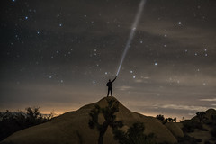 Star gazing, Joshua tree park (urbanexpl0rer) Tags: joshuatreepark joshuatree usa stars stargazing torch landscape nightphotography night longexposure 1person america intothewild nature