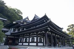 temple_PBN4546 (pbnewton) Tags: bridge japan tokyo rainbow buddha great hasetemple yuigahamabeach kotokuintemple enoshimaisland odaibaisland nikond4 rhetoricru enodentrain pbnewton kamakurahighschool sasukeshrine kamakuracoast