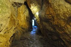 Jaskinia Mroźna | Mroźna Cave
