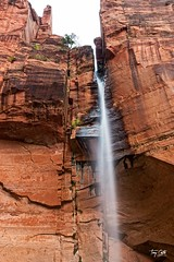 20150523 Emerald Pools (Zion)-5 (Tony Castle) Tags: park nature forest utah us waterfall unitedstates hurricane national pools zion znp emeral