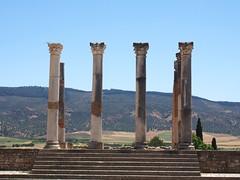 P5261364 (lnewman333) Tags: africa ancient northafrica historic worldheritagesite morocco fez maroc maghreb column fes volubilis romanruins unescosite 1stcenturyad