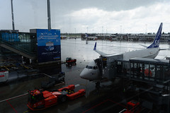 SAS Boeing 737-700, OSL (Boris Samoylenko) Tags: oslo plane airplane airport nikon exterior aircraft aviation apron boeing sas spotting scandinavian lufthavn osl gardermoen 737 avia b737 engm авиация авиа d5200 serjr
