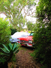1958 Plymouth Belvedere Sedan (RS 1990) Tags: car sedan plymouth july 2nd american 1958 adelaide belvedere thursday import southaustralia rare uncommon 2015 modbury teatreegully faulknerst wrightrd