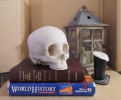 Still Life (micro.burst) Tags: stilllife home georgia fun skull gwinnettcounty olympusviewer3 olympusem10