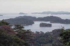 20160925-35 (GenJapan1986) Tags: 2016 fujifilmnatura1600 nikonnewfm2 フィルム 宮城県 東北地方 松島湾 松島町 海 風景 miyagi film japan sea landscape