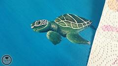 Schildkröte3 (Sandys.PiecesOfArt.) Tags: schildkröte malen gemalt gezeichnet zeichnen drawing turtle undersea blue green animal acryl acrylic canvas auf leinwand acrylmalerei malerei illustration sandyspiecesofart sandys piecesofart