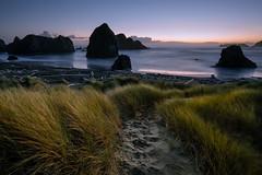 Last Light (Heather Smith Photography) Tags: oreogon beach oregoncoast ocean sunset water seastacks dunes seagrass le longexposure sony a7r2 footprints rocks meyersbeach
