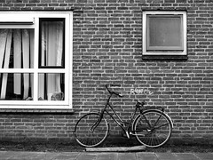 © Inge Hoogendoorn (ingehoogendoorn) Tags: fietsen fiets fietswrak fietswrakken bike bikes bikeparking bicycle bicycles zwartwit dutchbikes dutchbike nosaddle blackandwhite blacknwhite composition compositie student studenten students studentenhuis